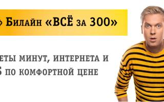 Все за 300 билайн москва описание